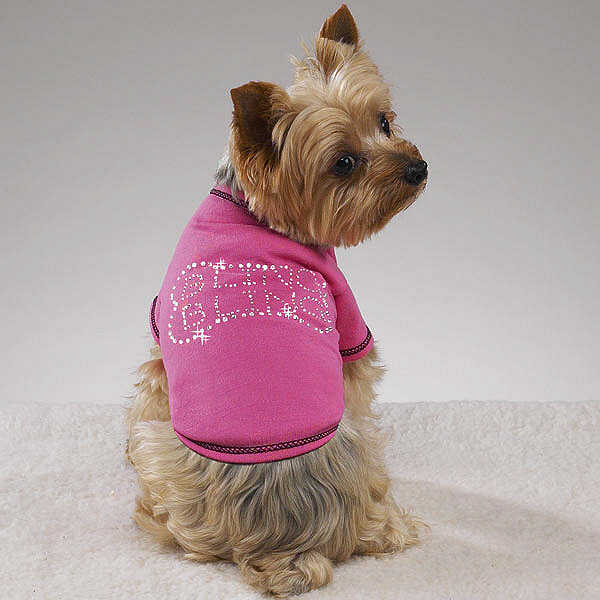 Chic Dog & Cat Pet Clothes, Bandanas & More