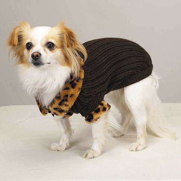 fancy pet sweater