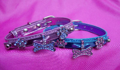 slider dog collar charms