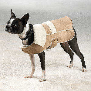 Faux suede Shearling dog coat