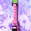 Guardian Gear Two Tone Pink Dog Collar